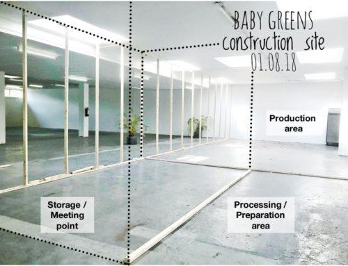 Baby Greens new home @ ZOHO / Rotterdam